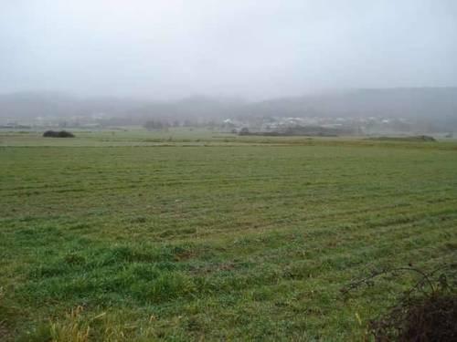 imagen 1 de Se venda tierra de labor en Mosteiro