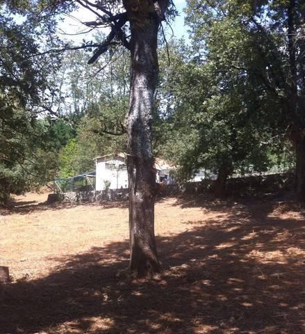 imagen 2 de Vendo terreno en Paderne de Allariz
