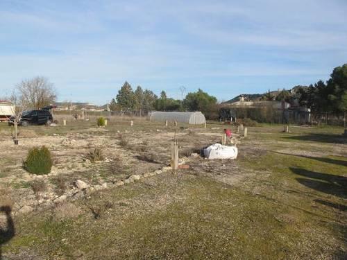 imagen 3 de Venta de terreno con merendero en Tariego de Cerrato ( Palencia)