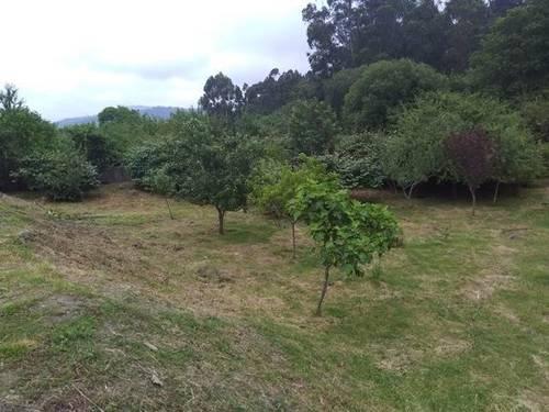 imagen 2 de Venta de terreno en Redondela (Pontevedra)