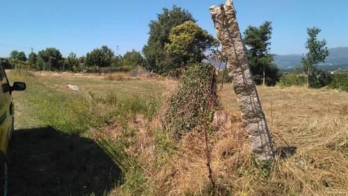 imagen 2 de Venta de finca con buen acceso en Areas (Tui)