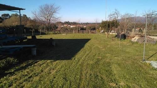 imagen 1 de Venta de finca llana y vallada en Tui (Pontevedra)