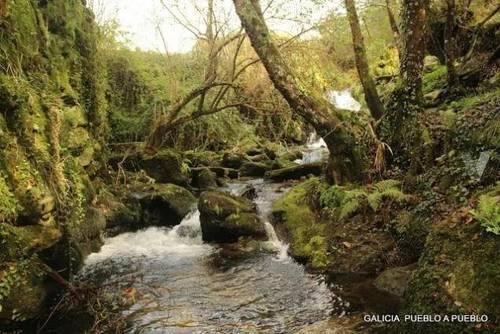 imagen 1 de Venta de precioso terreno rústico en Pontevedra