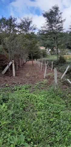imagen 1 de Venta de parcela en  Mos (Pontevedra)