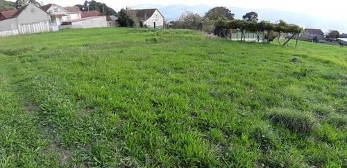 imagen 1 de Venta de terreno con viña en Mos (Pontevedra)