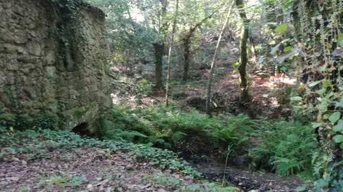 imagen 1 de Venta de monte en Nigrán (Pontevedra)