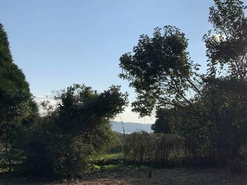 imagen 1 de Venta de finca vallada en Bueu