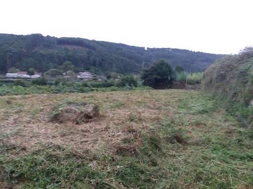 imagen 1 de Venta de terreno llano con manantial en Tomiño
