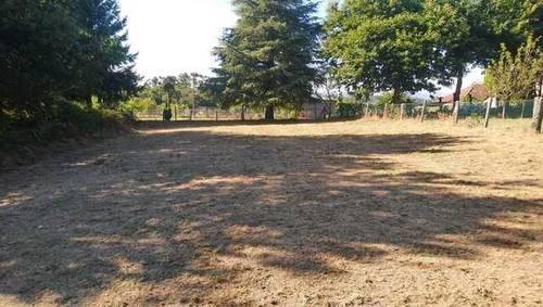 imagen 2 de Venta de finca llana y soleada en Fornelos de Montes