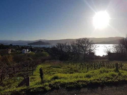 imagen 1 de Venta de terreno con viñedo en Poio (Pontevedra)