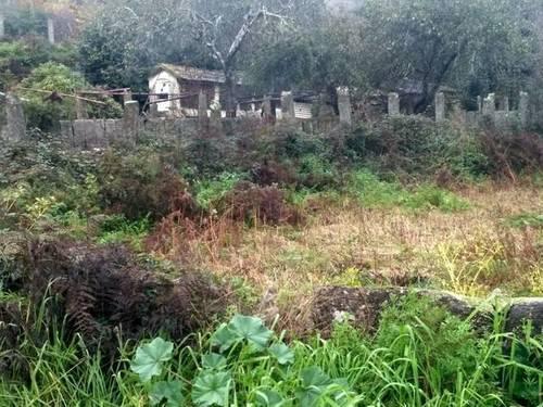 imagen 1 de Venta de terreno con mucho agua en Ponteareas