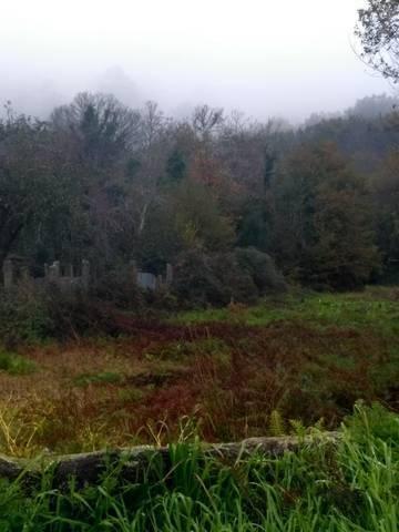 imagen 2 de Venta de terreno con mucho agua en Ponteareas