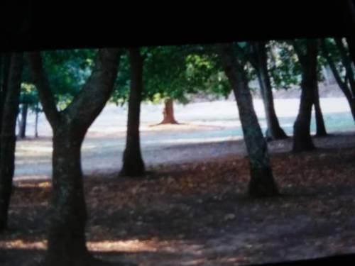 imagen 2 de Venta de terreno junto al río en Goyán