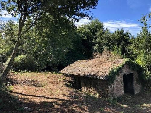 imagen 1 de Venta de terreno con antigua casa y cuadra en Redondela