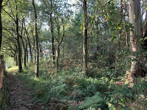 imagen 3 de Venta de terreno con magníficas vistas en Redondela