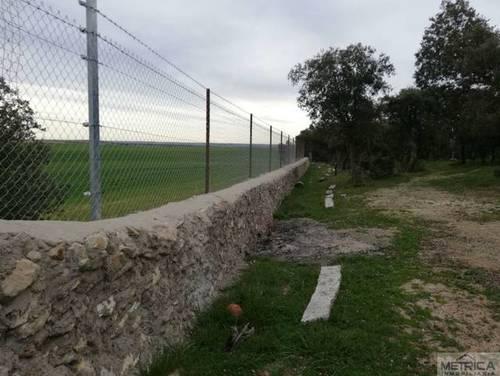 imagen 6 de Venta de preciosa finca con casa en Calvarrasa de Arriba (Salamanca)