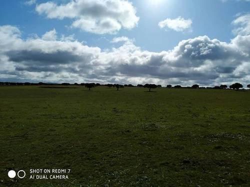 imagen 3 de Venta de finca (Dehesa) cerca de Vecinos