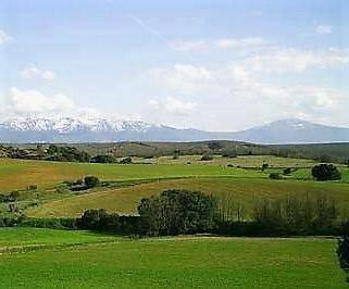 imagen 2 de Venta de estupendas fincas agrícolas y ganaderas en Riaza (Segovia)