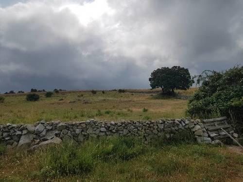 imagen 2 de Venta de finca valla en Navas de San Antonio (Segovia)