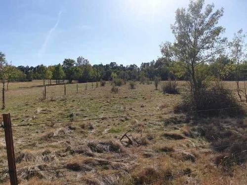 imagen 2 de Venta de terreno rústico vallado y arbolado en Segovia