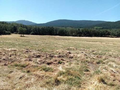 imagen 3 de venta de terreno con boxes para caballos