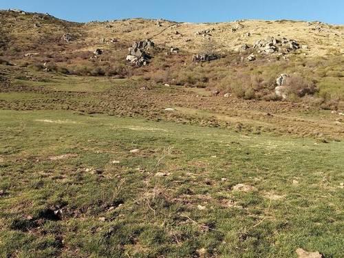 imagen 1 de Venta de finca con buen pasto en El Espinar (Segovia)