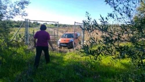 imagen 1 de Venta de terreno vallado con olivos en Tomares (Sevilla)