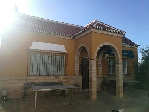 imagen 7 de Venta de finca con casa e instalaciones hípicas en Carmona (Sevilla)