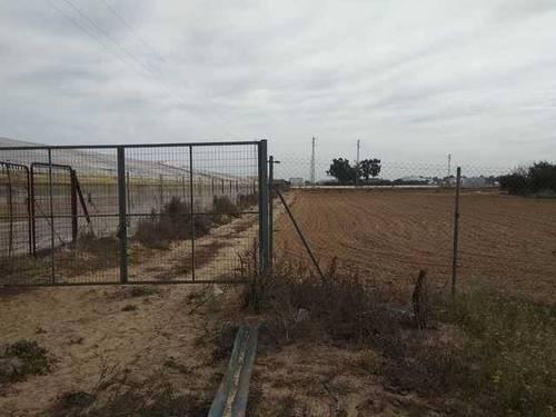 imagen 1 de Venta de finca vallada en Los Palacios (Sevilla)