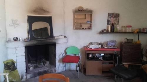 imagen 2 de Venta de olivar con casa en Bollullos  de la Mitación (Sevilla)