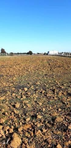imagen 2 de Venta de terreno vallado en Coria del Río (Sevilla)