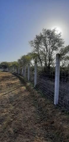 imagen 3 de Venta de terreno vallado en Coria del Río (Sevilla)