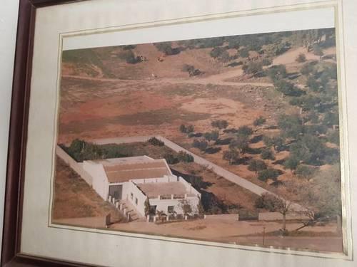 imagen 1 de Venta de terreno con casa y nave en Carmona
