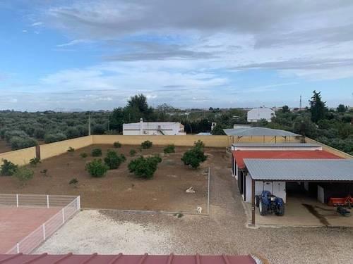 imagen 2 de Venta de terreno con chalet e instalaciones hípicas en Utrera (Sevilla)