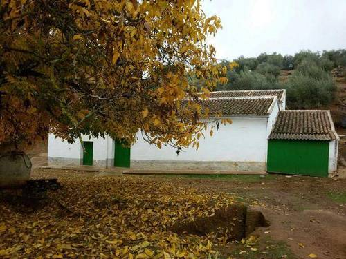 imagen 2 de Venta de finca con casa en Parque Natural (Sevilla)