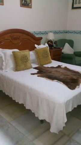 imagen 4 de Venta de parcela con chalet y zona ajardinada en Carmona