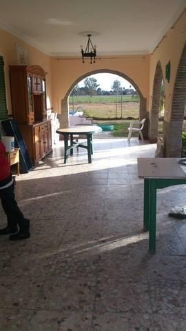 imagen 6 de Venta de parcela con chalet y zona ajardinada en Carmona
