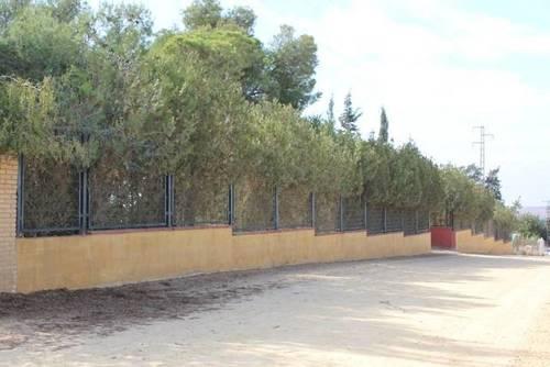 imagen 4 de Finca rústica con pequeña construcción en Alcalá de Guadaira