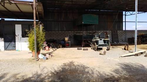 imagen 5 de Terreno con casa y boxes para caballos en Pilas (Sevilla)