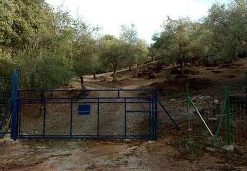 imagen 3 de Venta de finca vallada en Almadén de la Plata