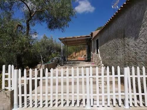 imagen 2 de Venta de olivar con casa en El Pedroso (Sevilla)