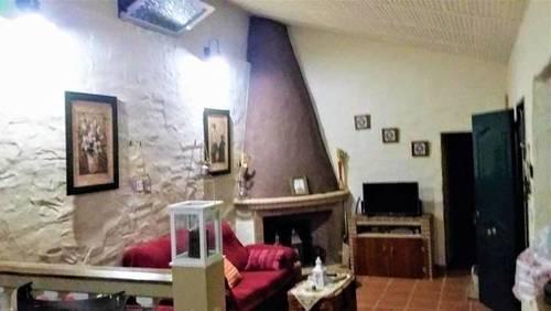 imagen 3 de Venta de olivar con casa en El Pedroso (Sevilla)