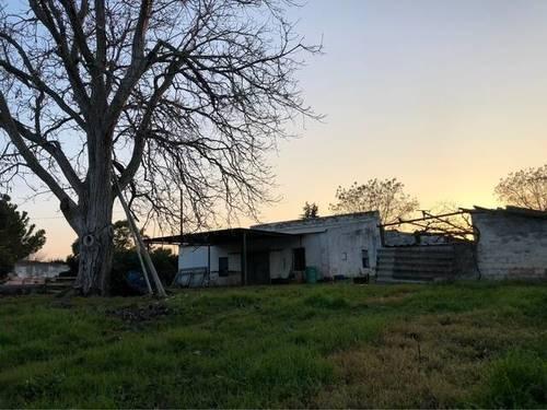 imagen 2 de Venta de finca con casa y bien ubicada en Sanlucar la Mayor
