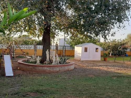 imagen 7 de Venta de bonita finca con chalet y plaza de toros en Utrera