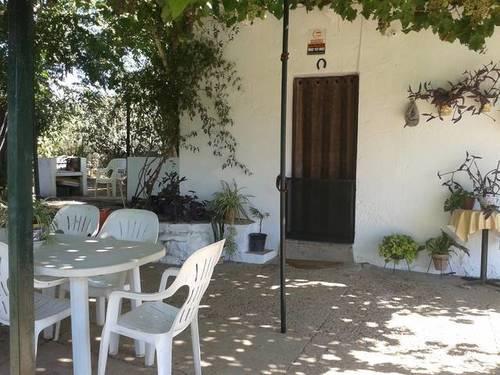 imagen 5 de Venta de finca con casa, nave y olivar en Cantillana