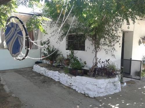 imagen 3 de Venta de finca con casa, nave y olivar en Cantillana