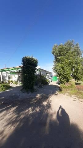 imagen 2 de Venta de terreno con casa y frutales