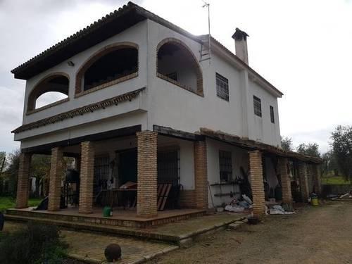 imagen 1 de Venta de finca con vivienda y piscina en Pilas