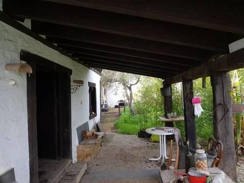 imagen 3 de Venta de finca con vivienda y piscina en Pilas