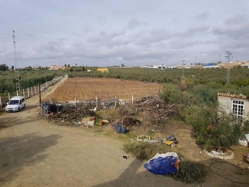 imagen 5 de Venta de finca con vivienda y piscina en Pilas